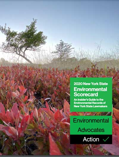 2020 Environmental Scorecard