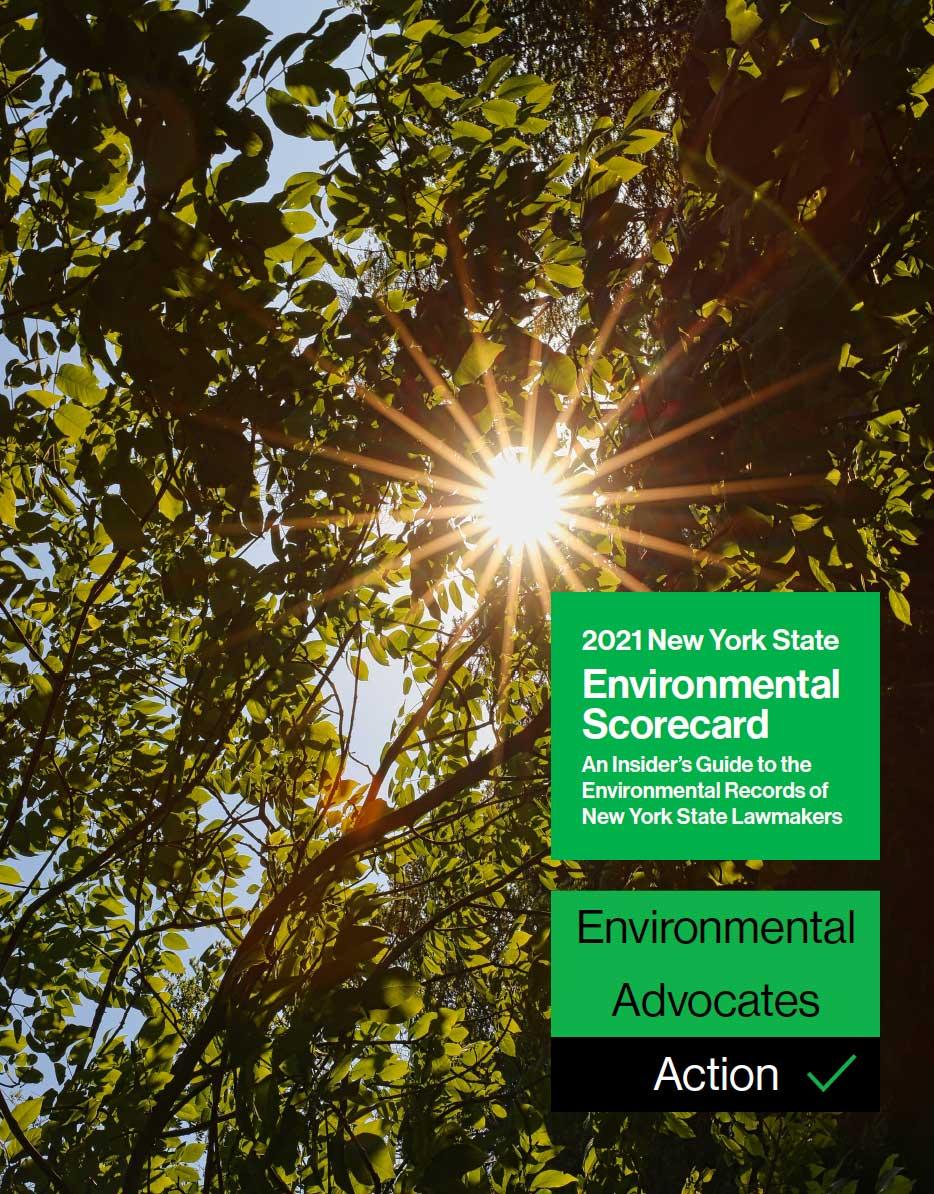 2021 Environmental Scorecard